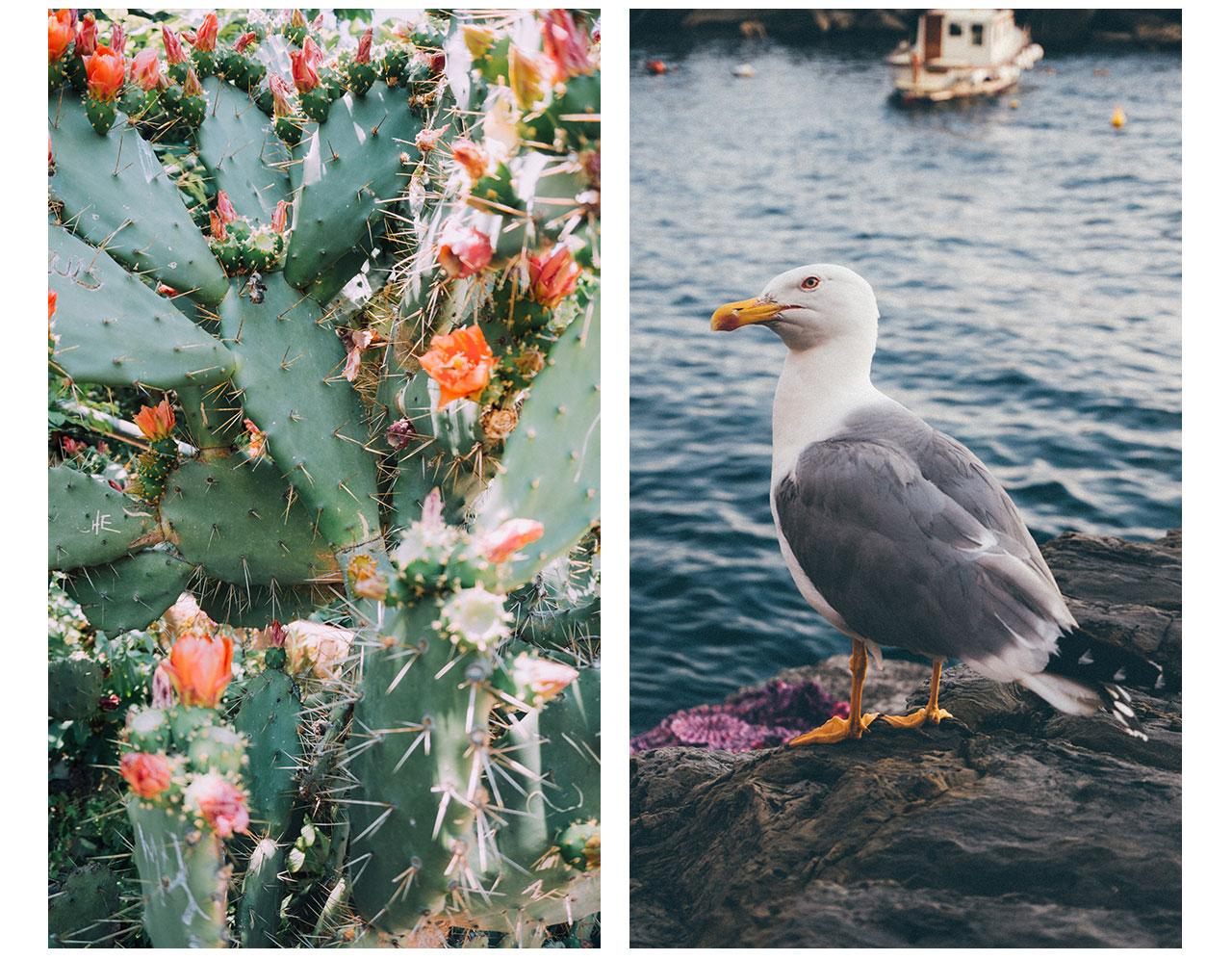 21_Cinque_Terre_Blog